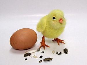 Видео мастер-класс. Пасхальный цыпленок. | Ярмарка Мастеров - ручная работа, handmade