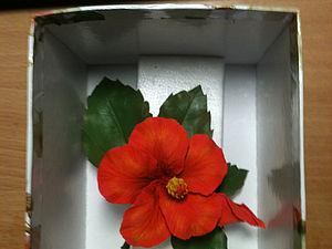 Надёжная упаковка для пересылки изделий из полимерной глины. | Ярмарка Мастеров - ручная работа, handmade