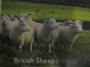Английский флис + книга про английские породы овец | Ярмарка Мастеров - ручная работа, handmade