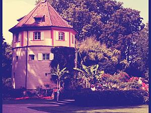 Остров Майнау – рай на земле. | Ярмарка Мастеров - ручная работа, handmade