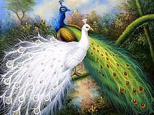Павлин - птица дивная. | Ярмарка Мастеров - ручная работа, handmade