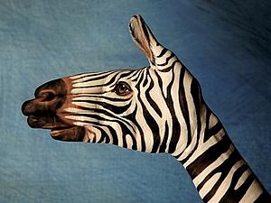 Рукозвери Гвидо Даниэле! Конфетка в коментах! | Ярмарка Мастеров - ручная работа, handmade