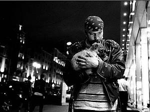 Фотографирую в пользу приюта для животных | Ярмарка Мастеров - ручная работа, handmade