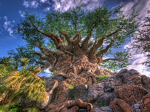 10 деревьев, которые словно с другой планеты   Ярмарка Мастеров - ручная работа, handmade
