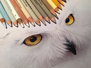 Невероятно реалистичные карандашные рисунки от Карлы Миалинн | Ярмарка Мастеров - ручная работа, handmade