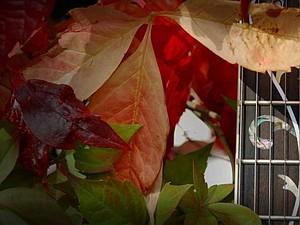 Wire Wrap & Metalsmith. Галерея 13-19 октября! | Ярмарка Мастеров - ручная работа, handmade