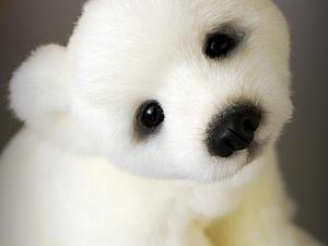 Умка.. полярный медвежонок. Ярмарка Мастеров - ручная работа, handmade.
