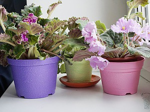 Преображение пластмассовых цветочных горшков. Ярмарка Мастеров - ручная работа, handmade.