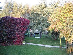 Осень | Ярмарка Мастеров - ручная работа, handmade
