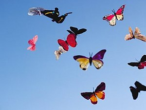 Проект Бабочка | Ярмарка Мастеров - ручная работа, handmade