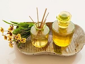 Масло жожоба — «жидкое золото» для тела и волос. Ярмарка Мастеров - ручная работа, handmade.