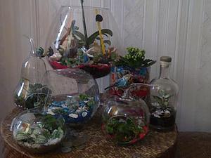 мини садики флорариумы | Ярмарка Мастеров - ручная работа, handmade