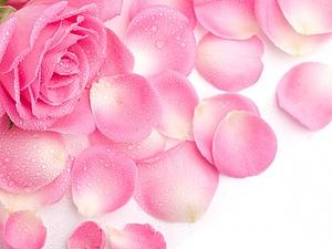 Гидролат розы | Ярмарка Мастеров - ручная работа, handmade