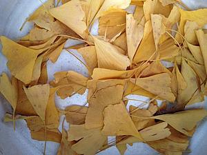 Заготовка листьев | Ярмарка Мастеров - ручная работа, handmade