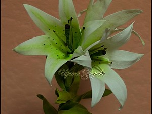 Делаем лилии из фоамирана. Ярмарка Мастеров - ручная работа, handmade.