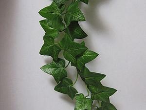 Плющ из полимерной глины (холодного фарфора), handmade