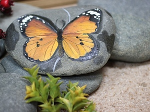 Роспись камней в стиле гиперреализма   Ярмарка Мастеров - ручная работа, handmade
