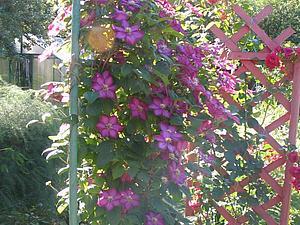 Весна - пора любви, пора чудес, Надежд и пробуждения природы... А у нас скидки! | Ярмарка Мастеров - ручная работа, handmade