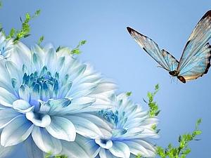 Образ бабочки в литературе | Ярмарка Мастеров - ручная работа, handmade