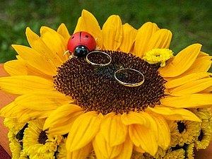 Свадьба с подсолнухами!!! | Ярмарка Мастеров - ручная работа, handmade