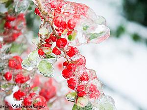 Цветная техасская зима. | Ярмарка Мастеров - ручная работа, handmade
