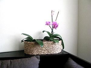 Декорирование цветочных горшков. Ярмарка Мастеров - ручная работа, handmade.