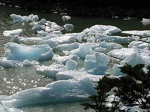Талая Вода   и магия природы | Ярмарка Мастеров - ручная работа, handmade