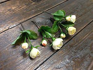 Новинка нашей студии - керамическая флористика (цветы из холодного фарфора) -Веточка яблони! | Ярмарка Мастеров - ручная работа, handmade