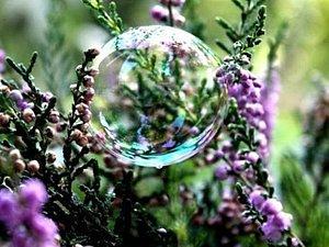 Вереск. Волшебство и польза от самой природы. | Ярмарка Мастеров - ручная работа, handmade