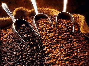 Кофе. Что мы знаем о нем? | Ярмарка Мастеров - ручная работа, handmade