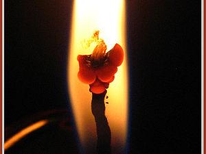 Подарок Огня   Ярмарка Мастеров - ручная работа, handmade