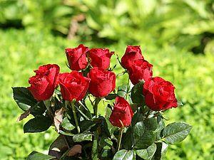 Миллион алых роз... | Ярмарка Мастеров - ручная работа, handmade