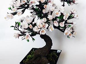 Изготовление бонсай «Цветущий абрикос». Ярмарка Мастеров - ручная работа, handmade.