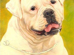 Портрет Вашей собаки,кошки по фото _ Конфетка-Розыгрыш!!! | Ярмарка Мастеров - ручная работа, handmade