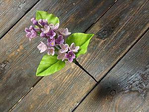 Новинка нашей студии - керамическая флористика (цветы из холодного фарфора) - Сирень! | Ярмарка Мастеров - ручная работа, handmade