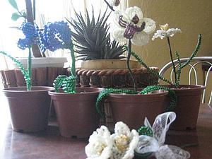 Бюджетный вариант подарков на 8 марта | Ярмарка Мастеров - ручная работа, handmade