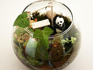 Мини-сад в банке (флорариум) своими руками | Ярмарка Мастеров - ручная работа, handmade