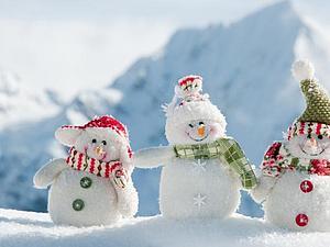 Благотворительный фестиваль «Новогодний Добрый Калининград».   Ярмарка Мастеров - ручная работа, handmade