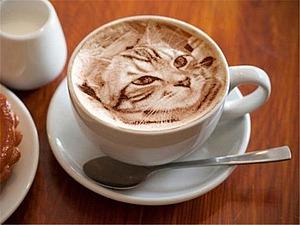 Coffee cats � ����� �������� ����� ��������� | ������� �������� - ������ ������, handmade