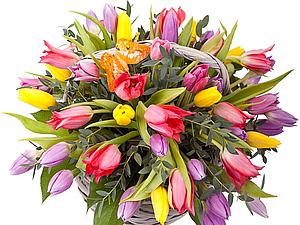 Поздравляем с Международным женским днём - 8 марта!!! | Ярмарка Мастеров - ручная работа, handmade