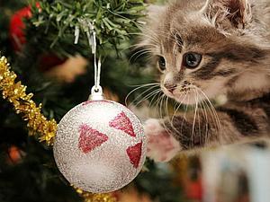 Обмен подарками к новому году! ИГРА! | Ярмарка Мастеров - ручная работа, handmade