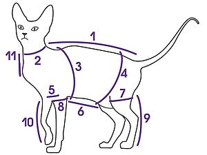 Мерки необходимые при заказе одежды для кошки | Ярмарка Мастеров - ручная работа, handmade