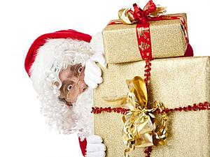 Лучший подарок на Новый год ребенку и взрослому! | Ярмарка Мастеров - ручная работа, handmade