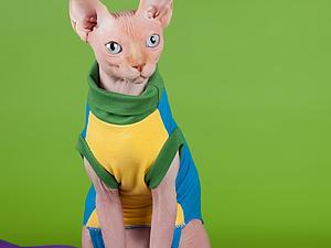 как правильно снять мерки с кошки   Ярмарка Мастеров - ручная работа, handmade
