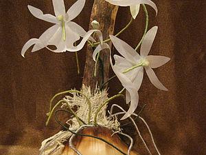 Цветочный талисман   Ярмарка Мастеров - ручная работа, handmade