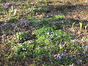 Весна | Ярмарка Мастеров - ручная работа, handmade