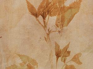 Крашение ткани растениями и морской водой. Июнь 2014 г. | Ярмарка Мастеров - ручная работа, handmade