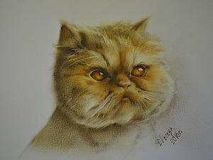 Рисуем кота в технике сухая кисть. Ярмарка Мастеров - ручная работа, handmade.