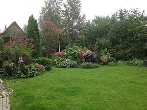 Приглашаю прогуляться по нашему саду. | Ярмарка Мастеров - ручная работа, handmade