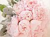 Психология цвета: нежный и романтичный розовый